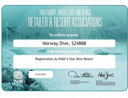Norway Dive Mallorca Becomes a 5 Star PADI Resort